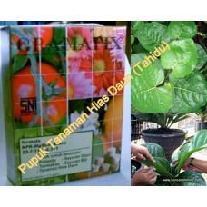 Pupuk (20 Pack) Gramafix® Sayuran Daun ( Leafy Fertilizer)